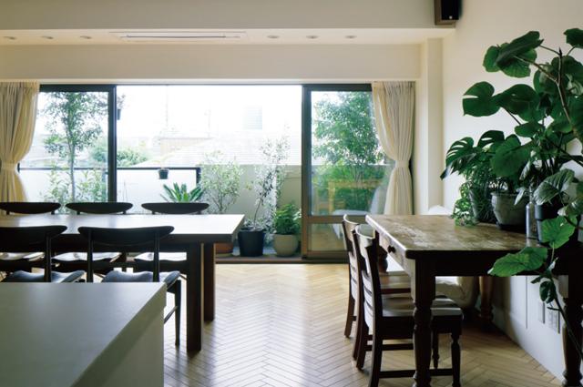 窓を開け、キッチンに立つと開放感のあるこの景色が広がる