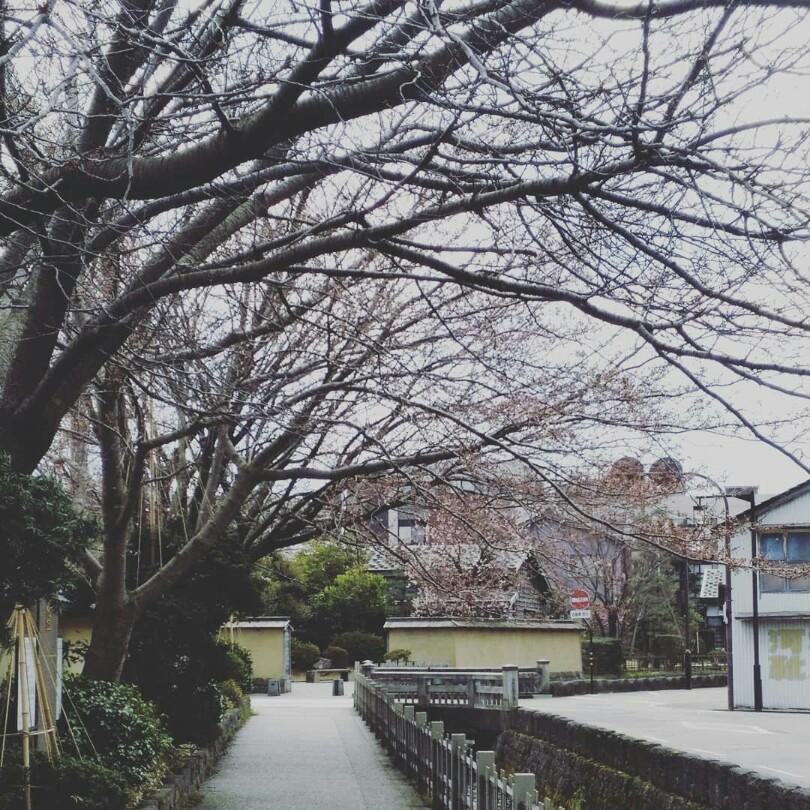 春の金沢旅♪~石川帰省録~_1_2