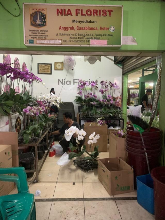 ジャカルタの花市場、Rawa Belong Flower Marketへ♪_1_8