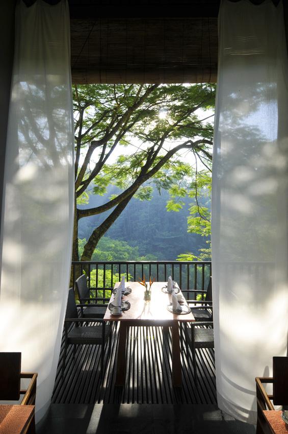 渓谷の緑が目に痛い マヤ ウブドゥ リゾート&スパ【インドネシアのお薦めホテル】_1_4-3