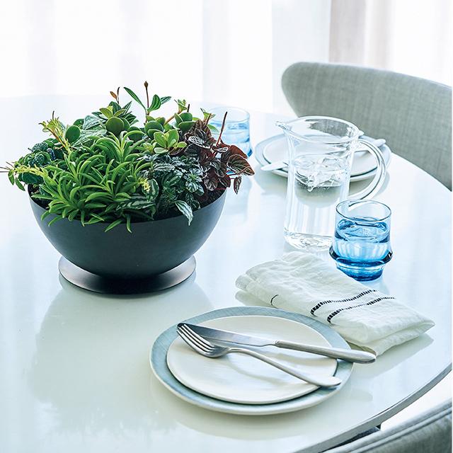 夏の快適インテリア「グリーン」や「リネン」で涼やかな空間作り_1_3