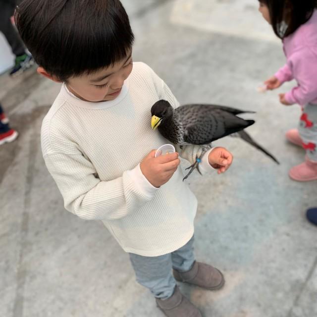 動物とのふれあい旅① ~子供が大喜びの鳥の楽園へ~_1_4-3