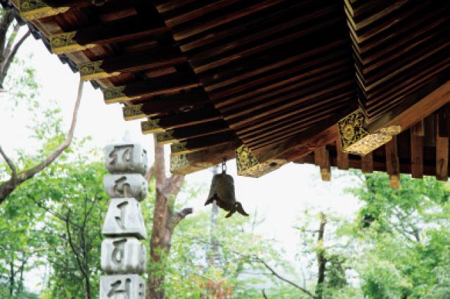 金堂の3段の垂木や菊の紋入り飾り金具