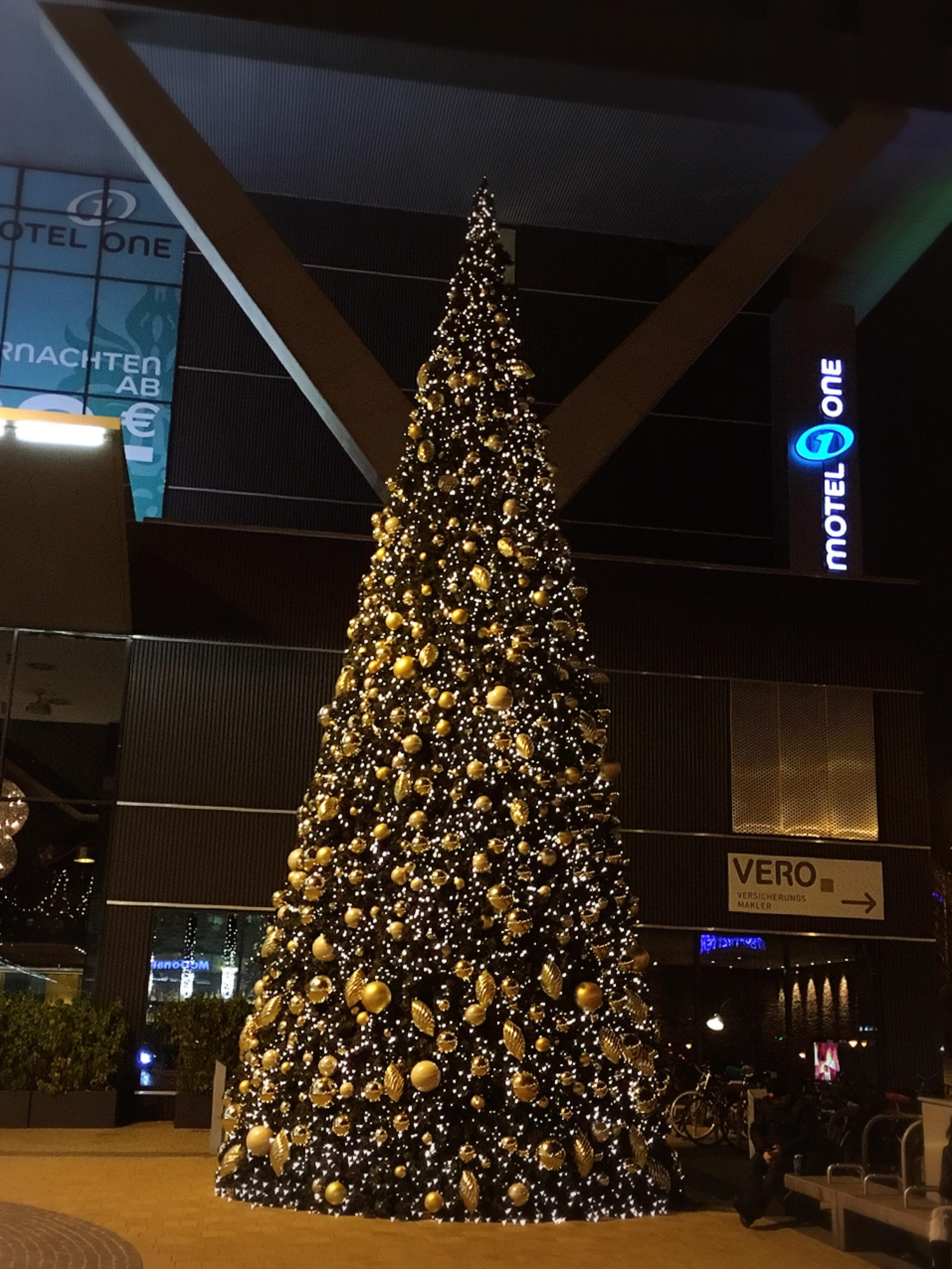 今年のウィーン西駅の巨大クリスマスツリー_1_4