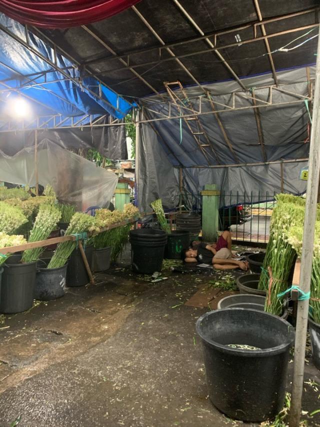 ジャカルタの花市場、Rawa Belong Flower Marketへ♪_1_6-3