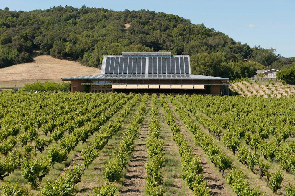 ワイン造りもサステナブルが要に。カリフォルニアワインの最新事情|Forbes JAPAN_1_3