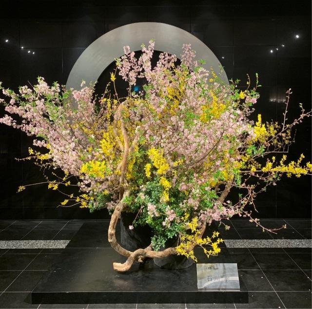 桜の季節_1_1