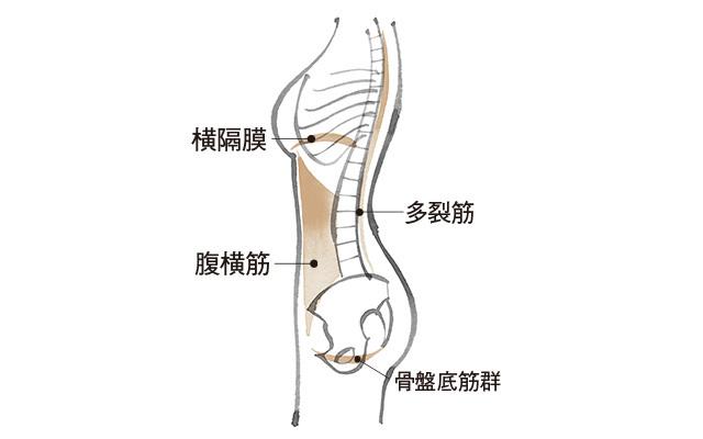今話題の「ガスケアプローチ」でケア!「骨盤底筋群エクササイズ」_3_2