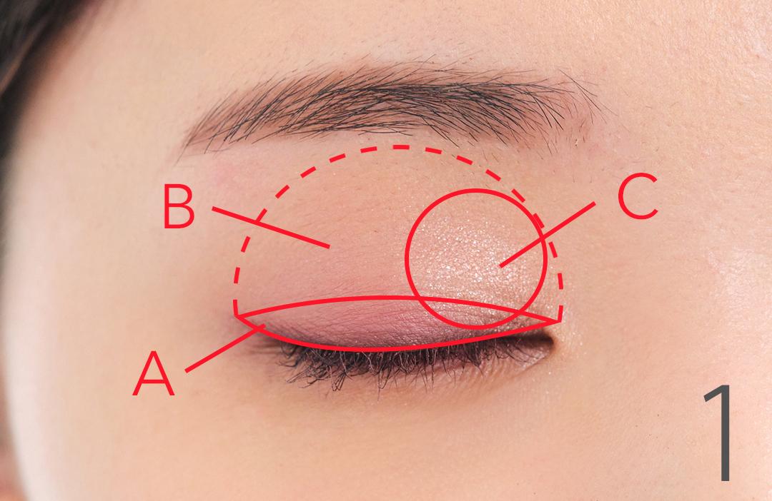 1. Bを上まぶた全体に広げ、Aを二重幅にぼかす。Cを指で取り、目頭側にサッとのせてツヤ感をプラスする。