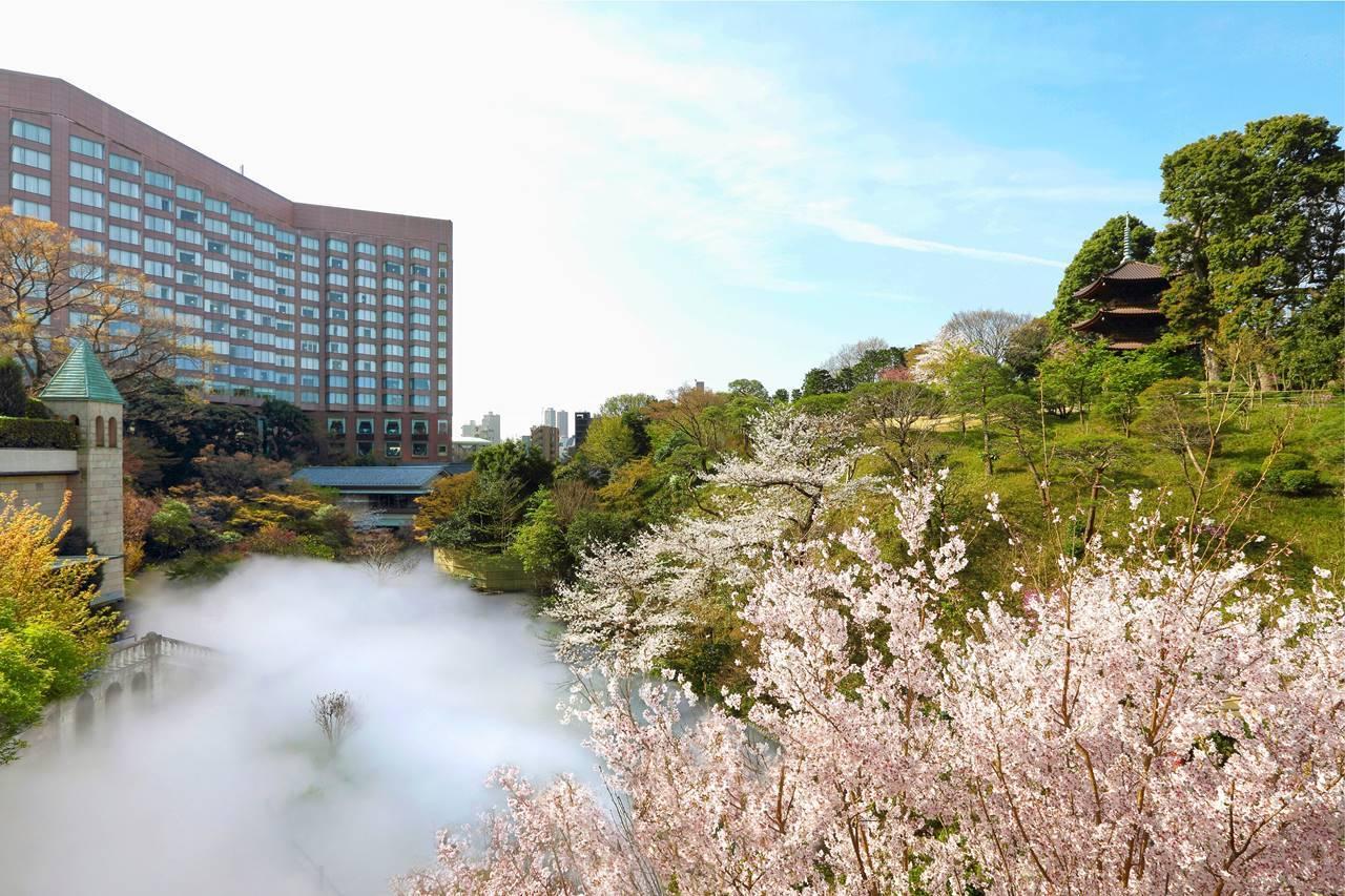 ホテル椿山荘東京とL'OCCITANE(ロクシタン)のコラボプラン「桜」と国内最大級の「東京雲海」