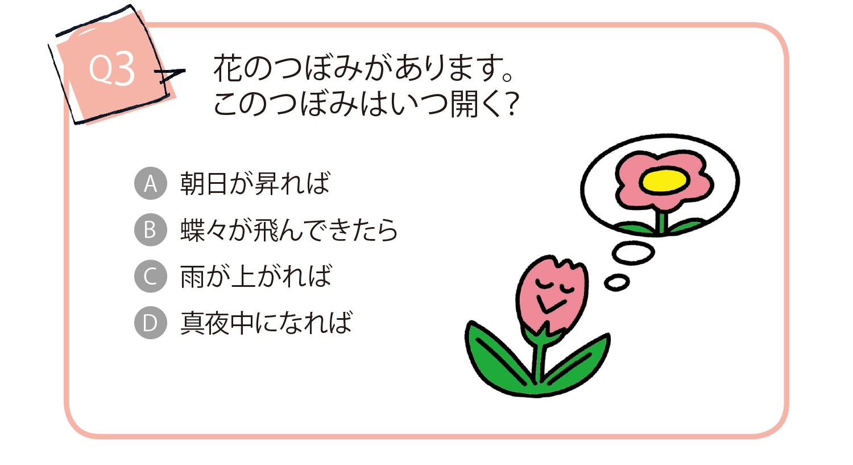 花のつぼみがあります。このつぼみはいつ開く?A朝日が昇れば B蝶々が飛んできたら C雨が上がれば D真夜中になれば
