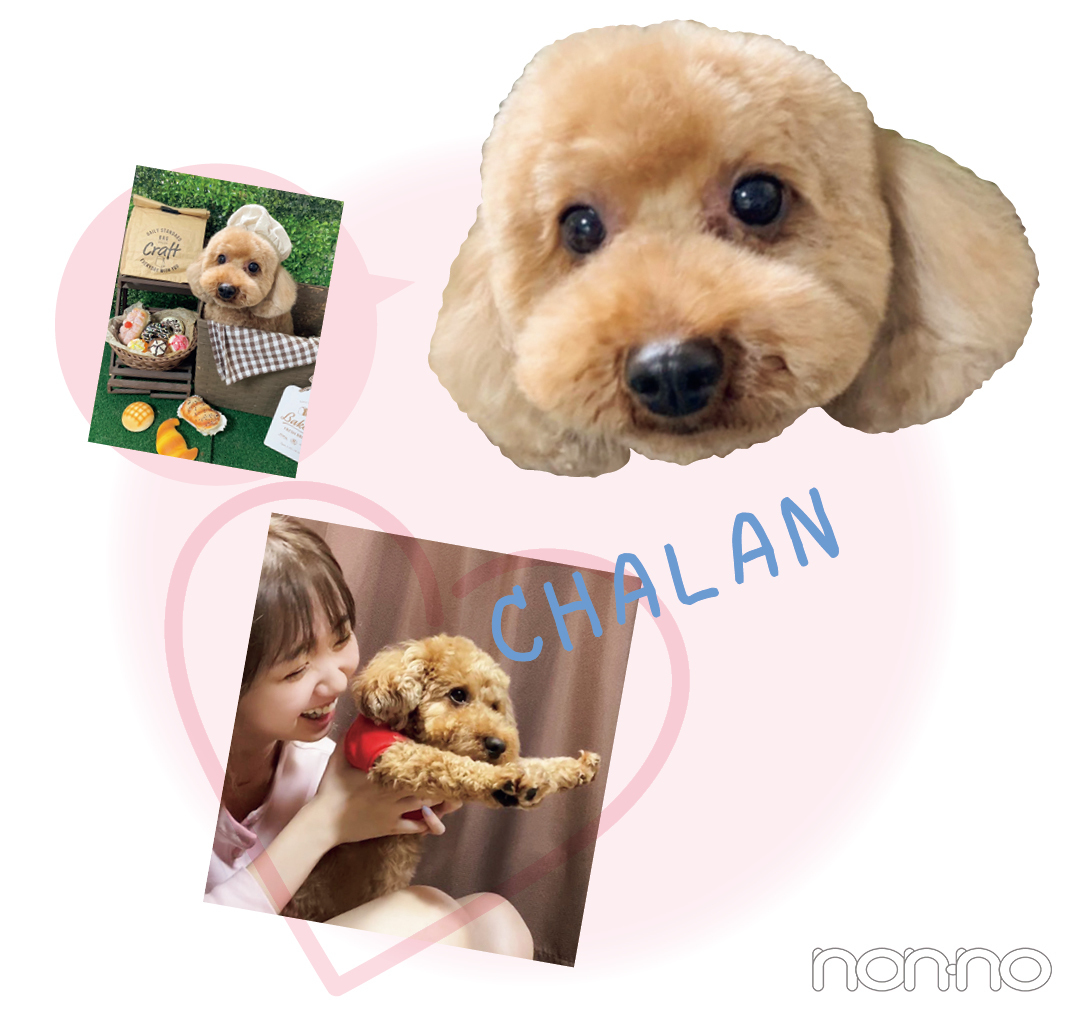 CHALAN