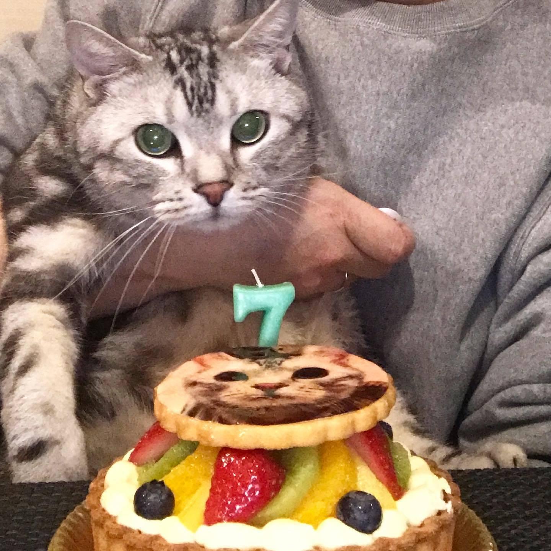 アラン7歳の誕生日