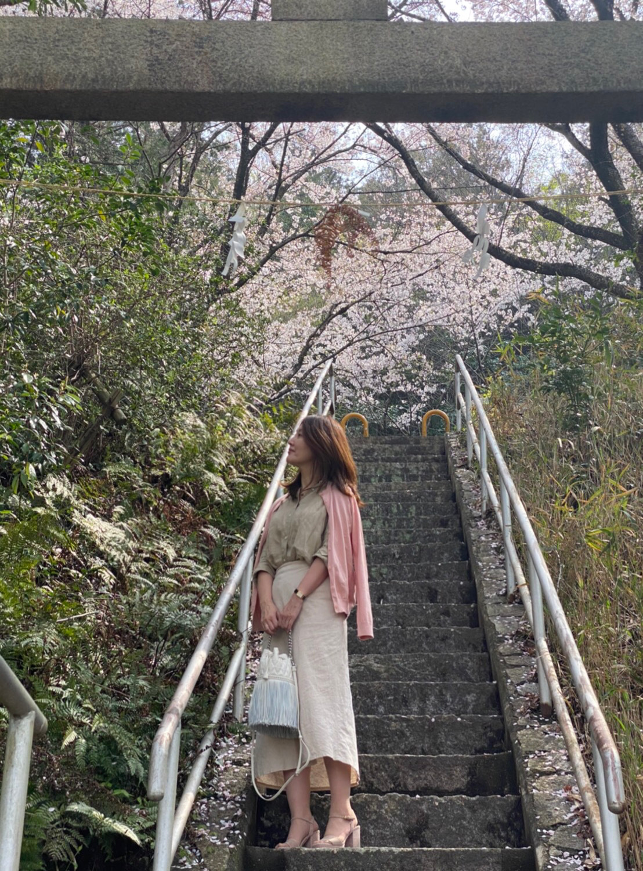 石の階段 女性 桜