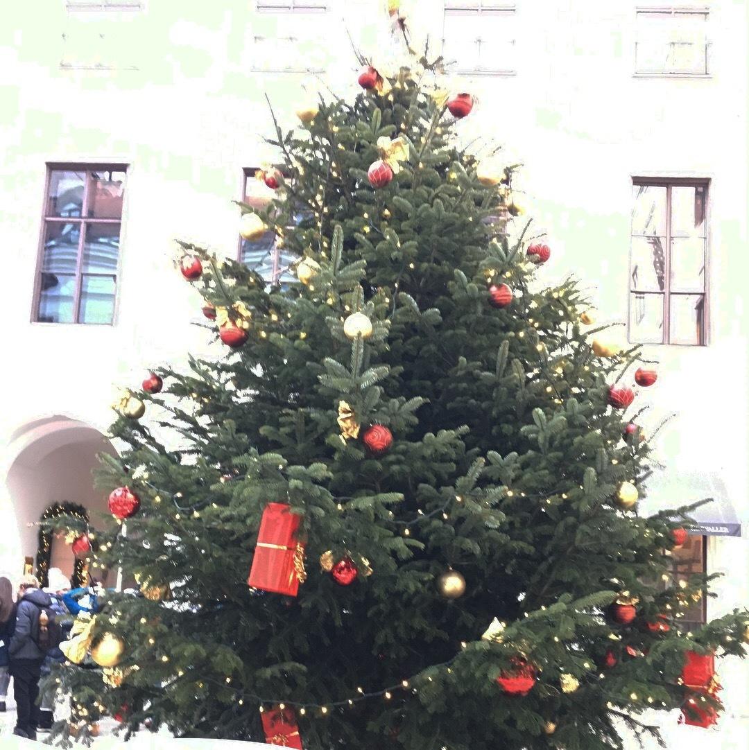 ウィーンのクリスマスマーケット_1_2
