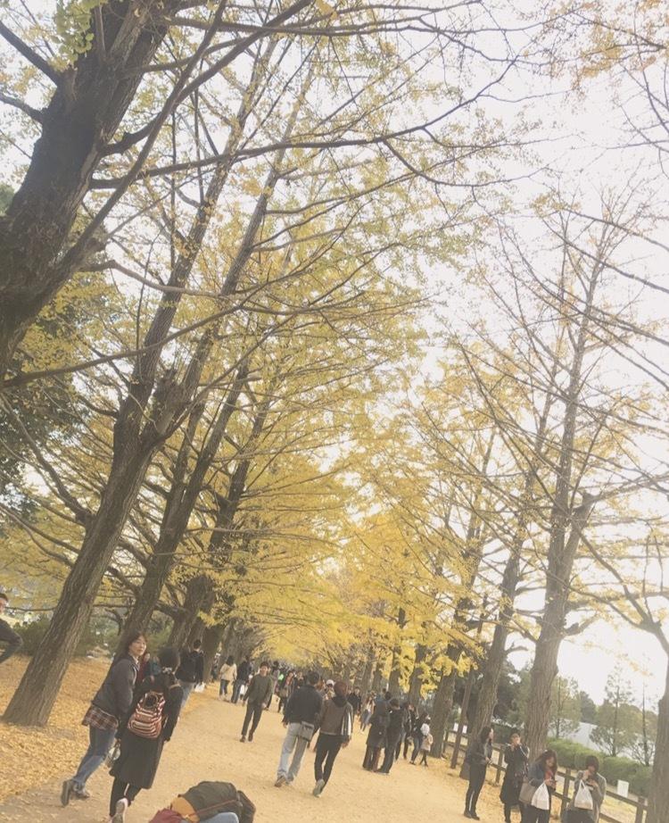 【都内で】秋を堪能!国営昭和記念公園の魅力♡_1_1