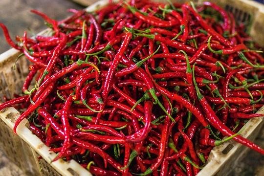 名物ラム肉串焼きが大人気の中国東北料理「味坊」でラムまみれ!_1_1-1