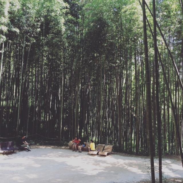 【Web限定】韓国・千年の美食を巡る 全羅道の旅②_1_2-1