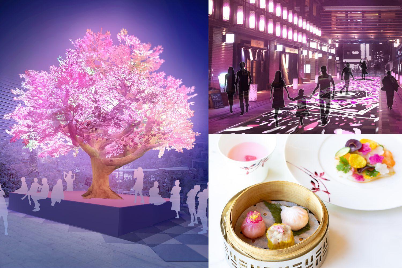 ピンク色で幸せ気分に! 春限定の桜スイーツをチェック_1_7-1