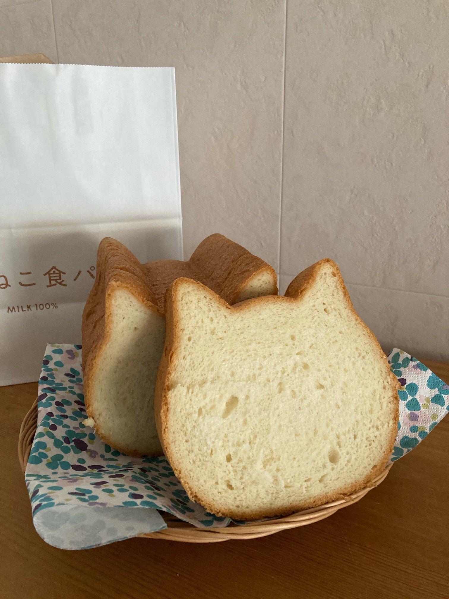 ねこねこ食パン_1_1
