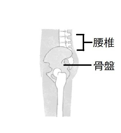 あなたの姿勢大丈夫?カギは骨盤にあり 老けない姿勢のつくり方②【From MyAge/OurAge】_1_3