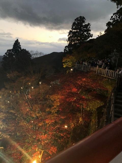 【週末のリフレッシュに】関東パワースポット 大山阿夫利神社_1_2