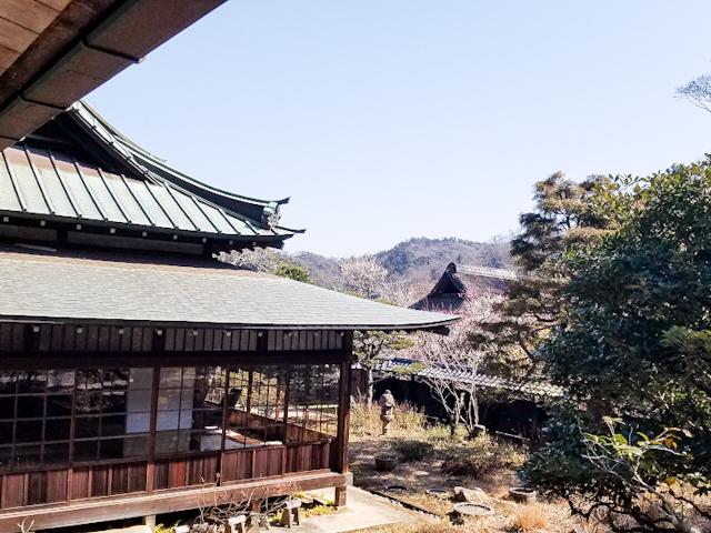 【さかぽんの冒険Vol.5】いざ 北鎌倉から湘南の旅❤️_1_4