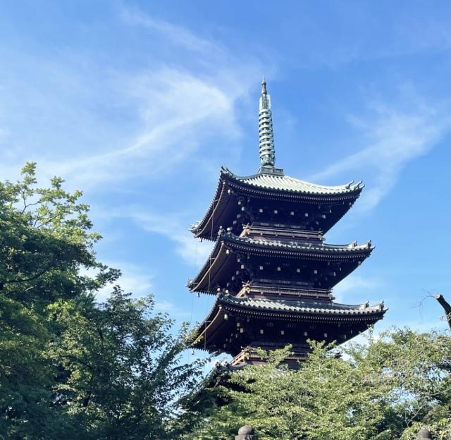 イサムノグチ展と上野公園散策、お勧めのお昼ご飯処。【40代 私の休日】_1_12
