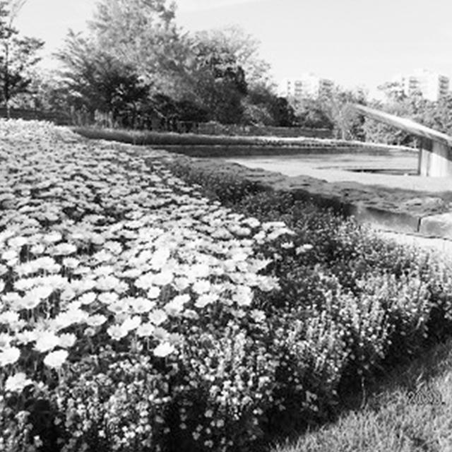 花と緑に囲まれ