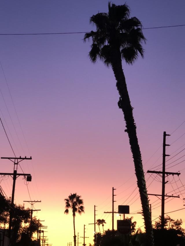 夏休み終盤はロサンゼルス旅行へ!①_1_3