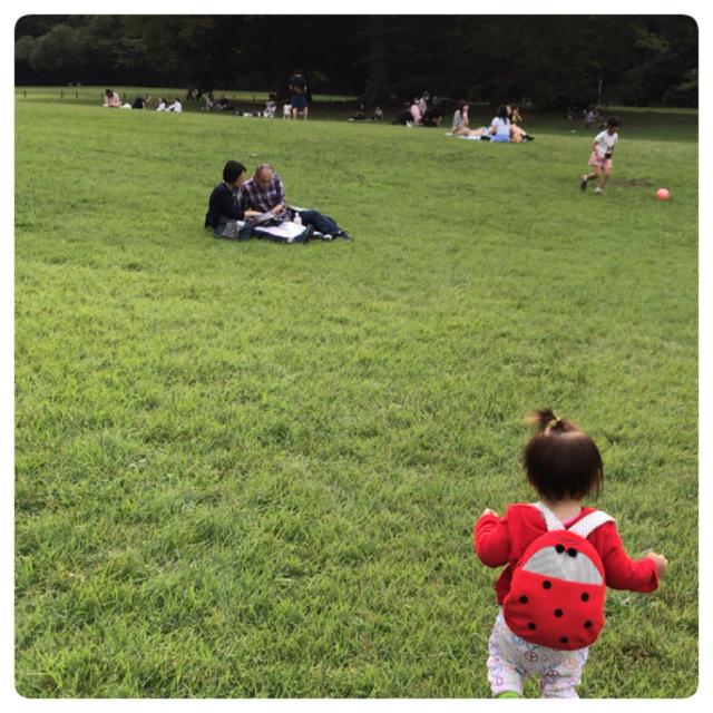 秋の公園散歩(明治神宮編)_1_1-3