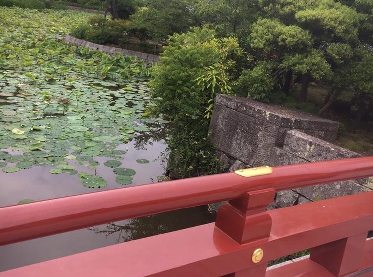 鎌倉は魅力がいっぱい❤︎ 第2弾_1_4-1
