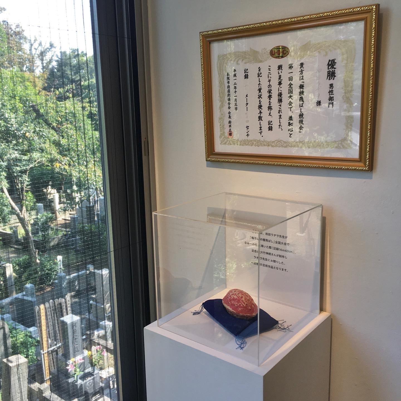 行けば楽しき、大&小の和田ラヂヲ展!_1_2-4