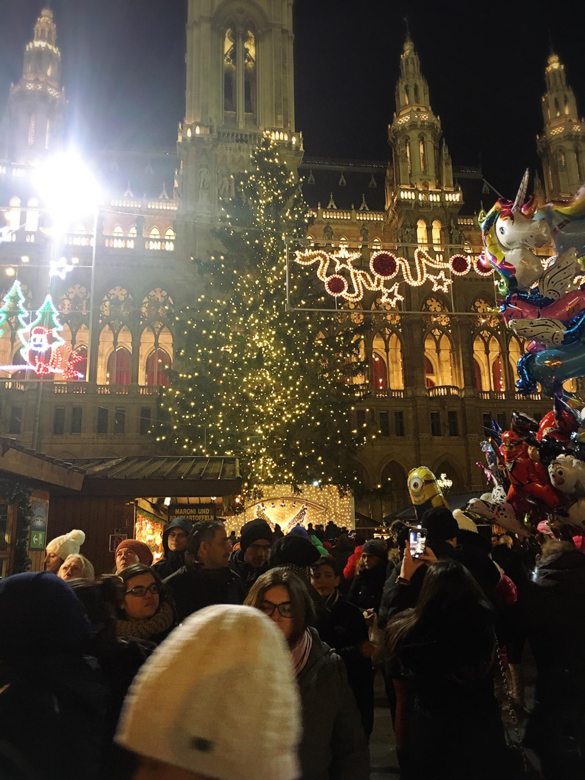 ウィーン市庁舎のマーケット_1_5