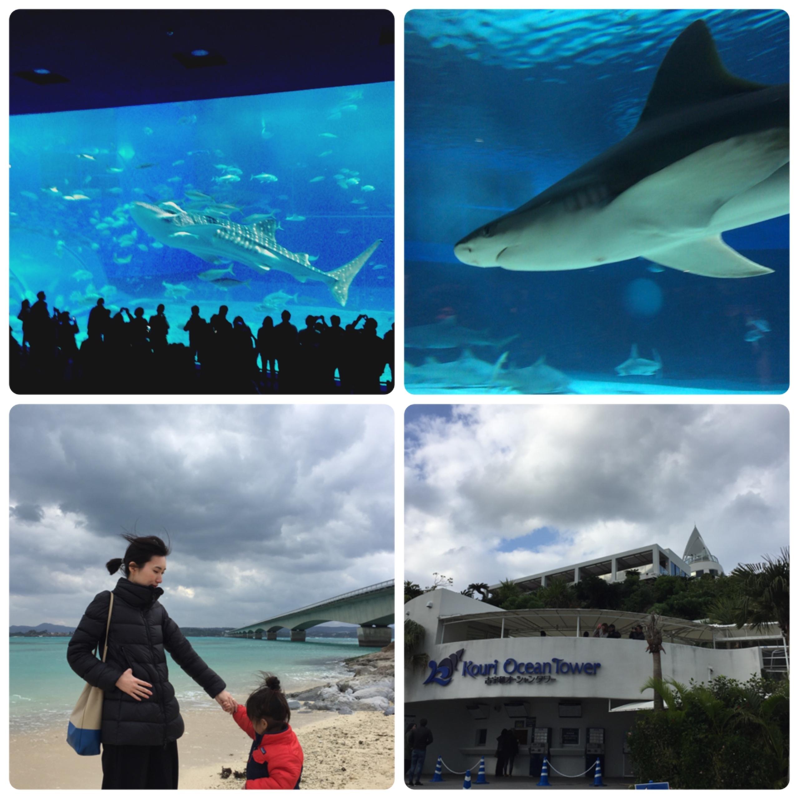 春旅!沖縄へ行ってきました。_1_2