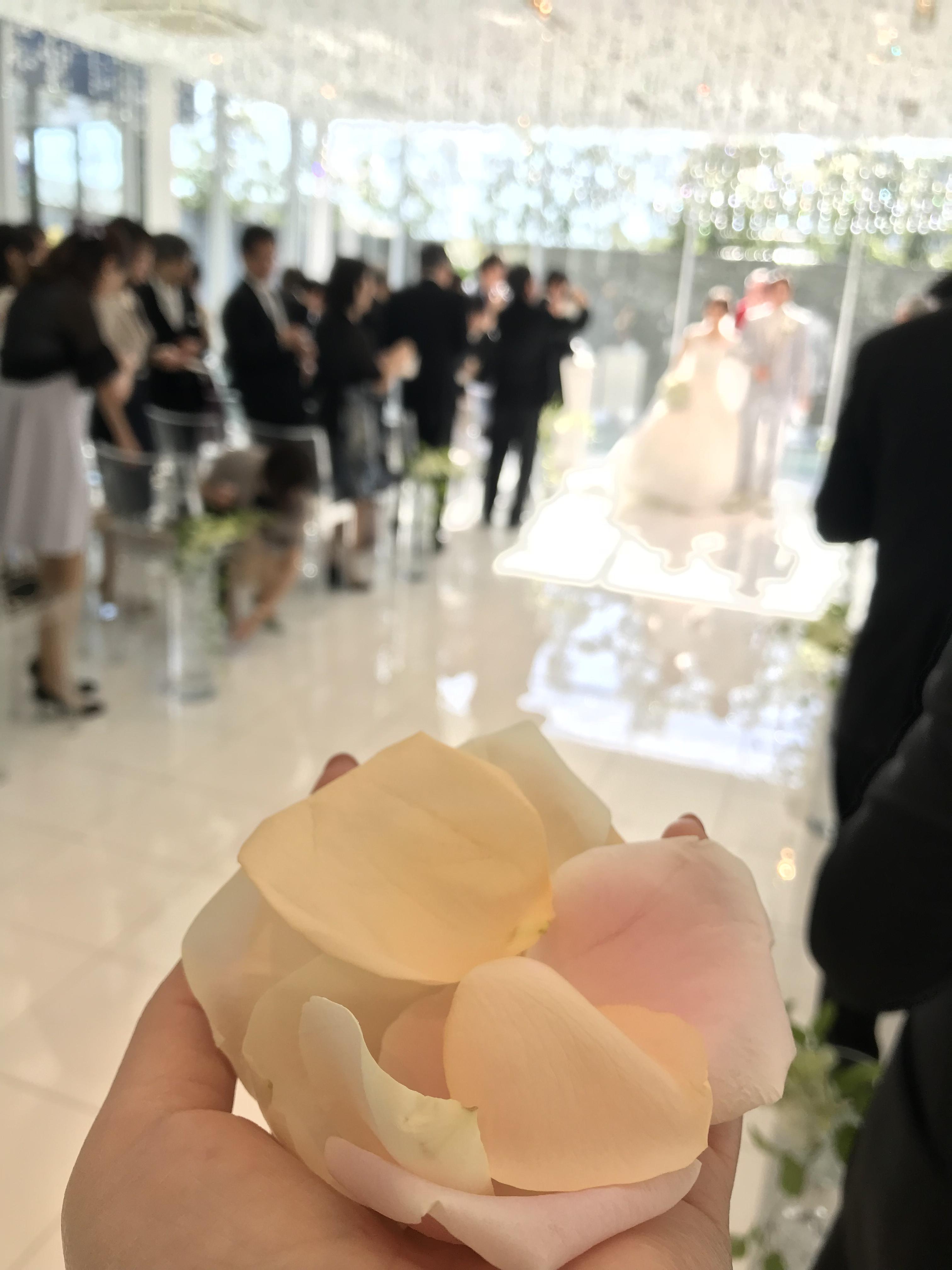 およばれ結婚式着物コーデ_1_3