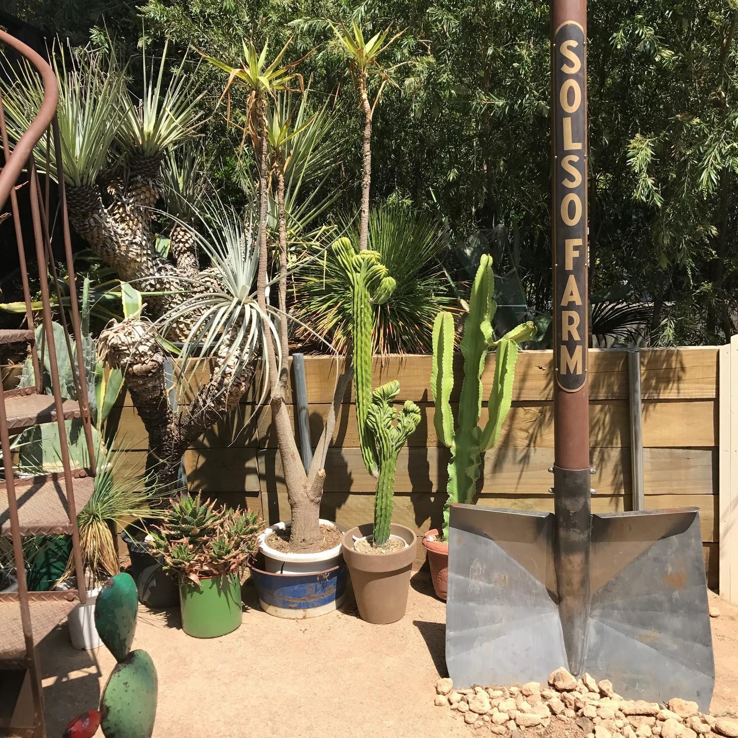 植物のテーマパーク「SOLSO FARM(ソルソファーム)」で過ごす週末_1_3-2