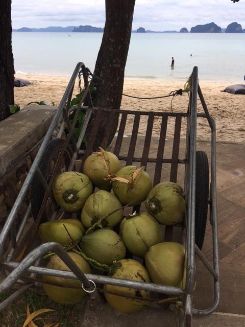 タイの隠れビーチリゾート『クラビ』へ *過ごし方編*_1_2-1