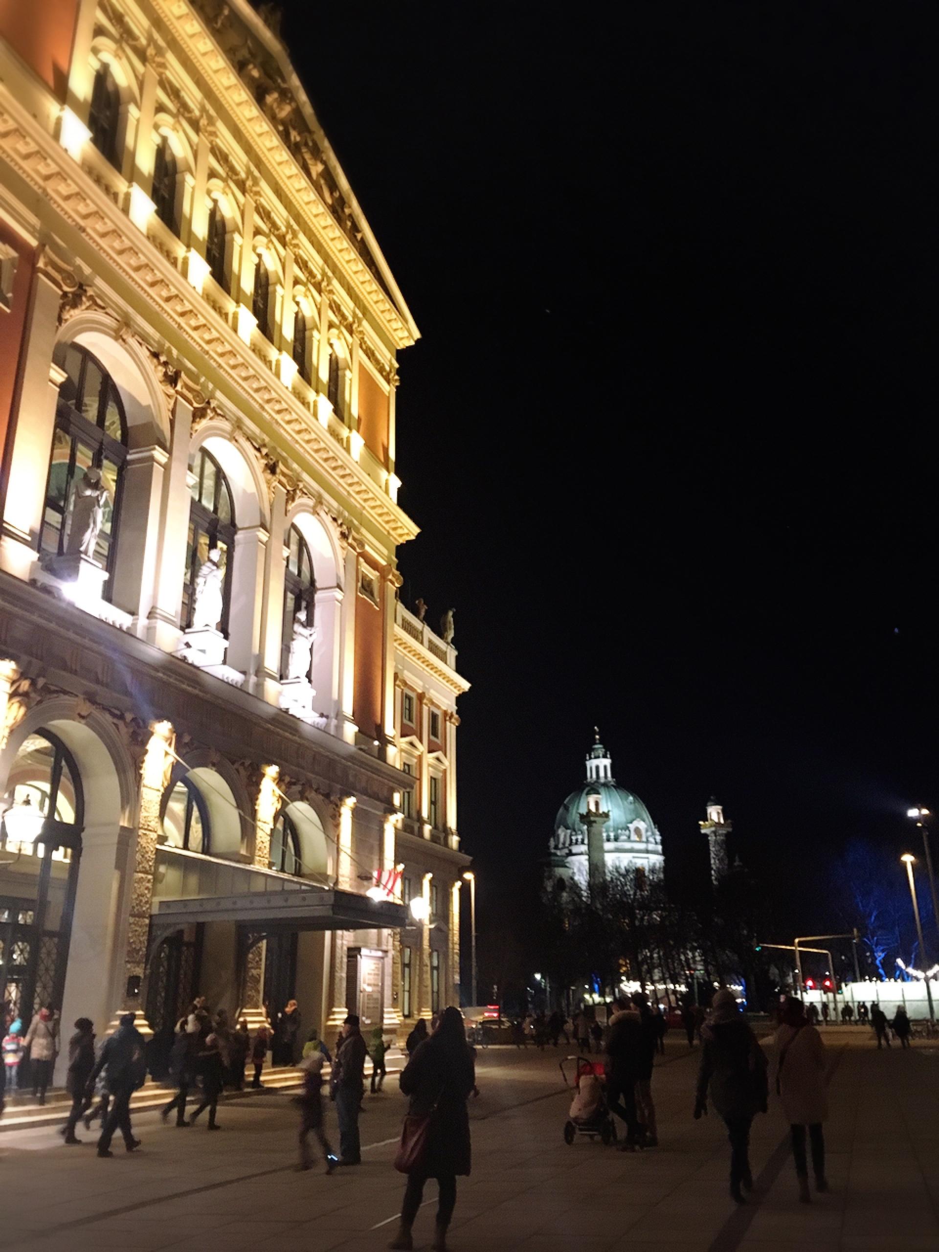 ウィーンのカールス教会のクリスマスマーケット_1_2