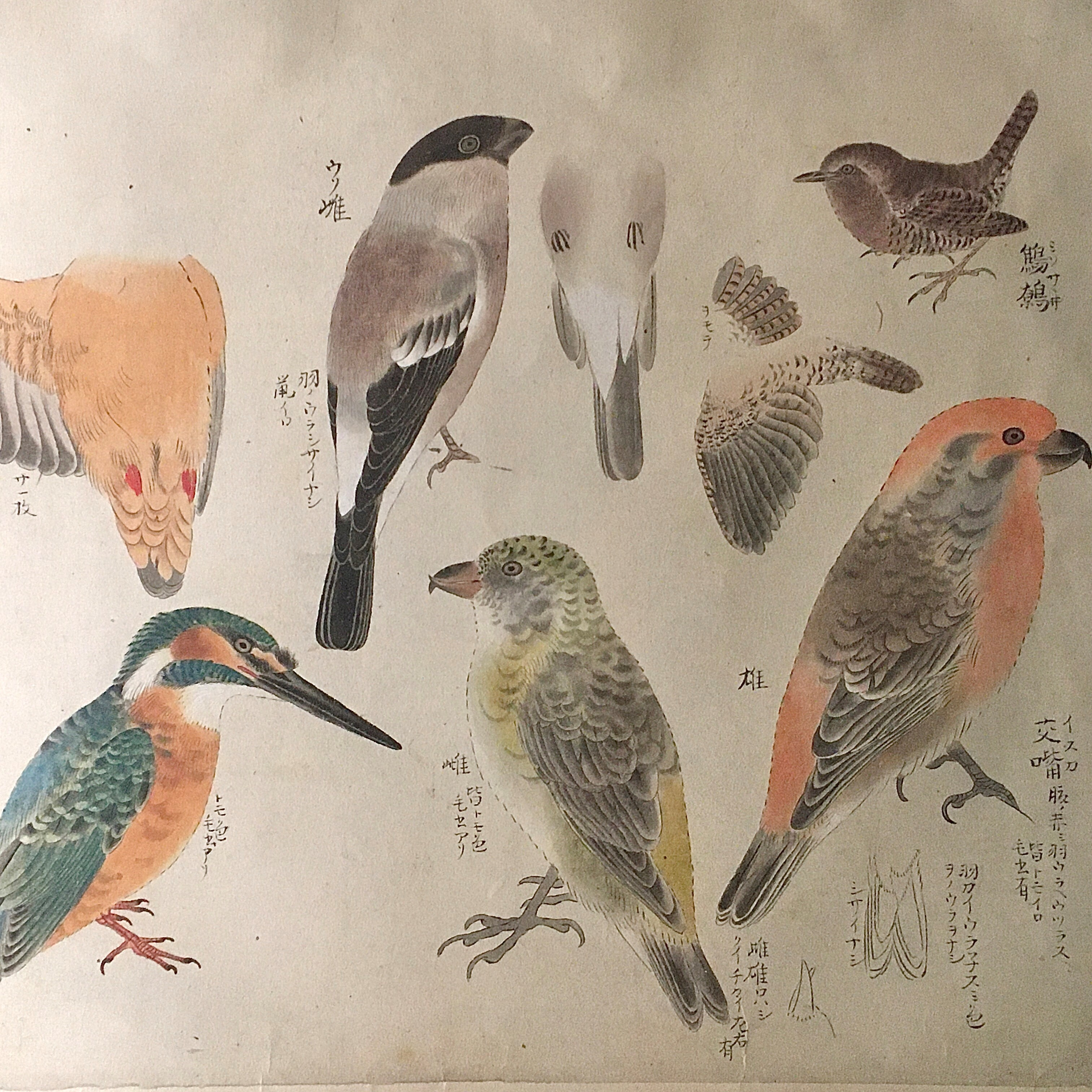 東京国立博物館、さすが!の総合文化展。_1_3-2