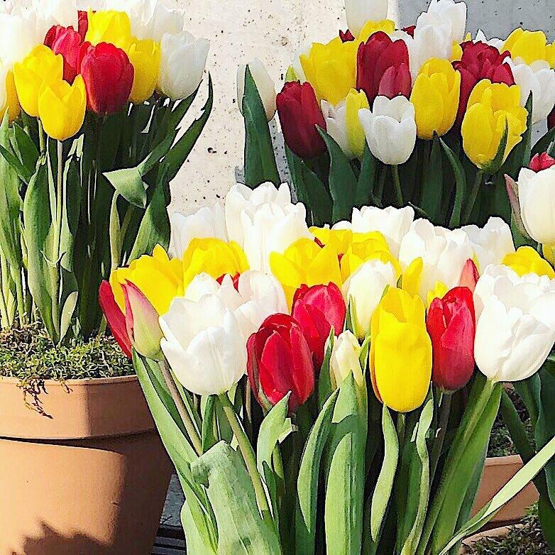 軽やかブルゾンで春へシフト_1_6