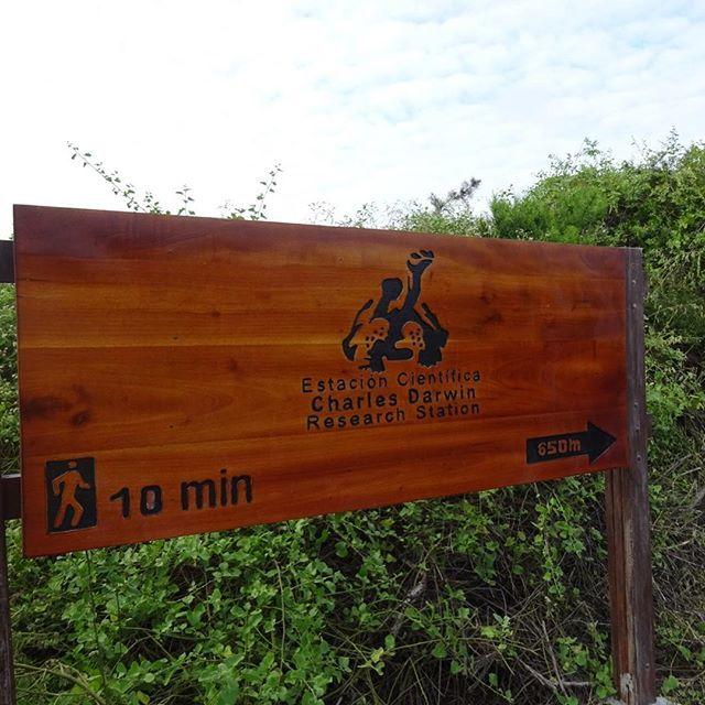 亀、亀、亀・・連休にガラパゴス諸島へ行ってきました!_1_4