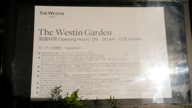 ウェスティンホテル東京「龍天門」でランチ_1_9-3