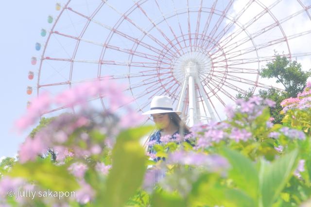 【さかぽんの冒険】初夏のお台場 あじさい散策_1_8
