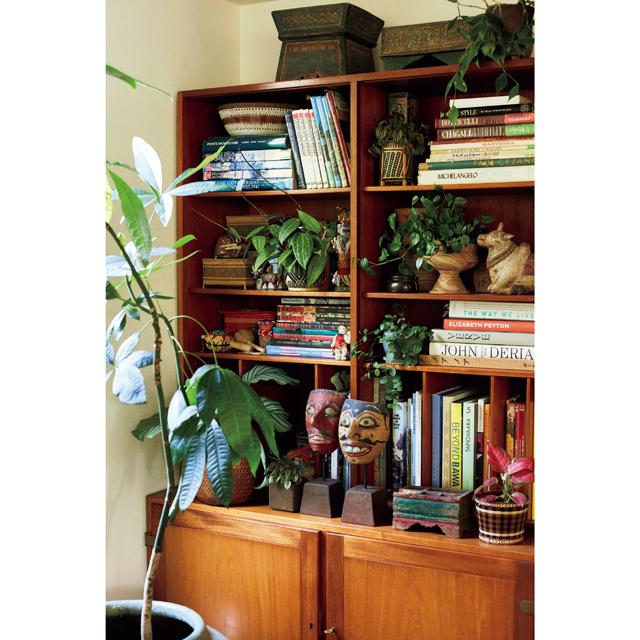 本棚には垂れ下がる植物を本や旅の思い出の品と一緒にあしらう