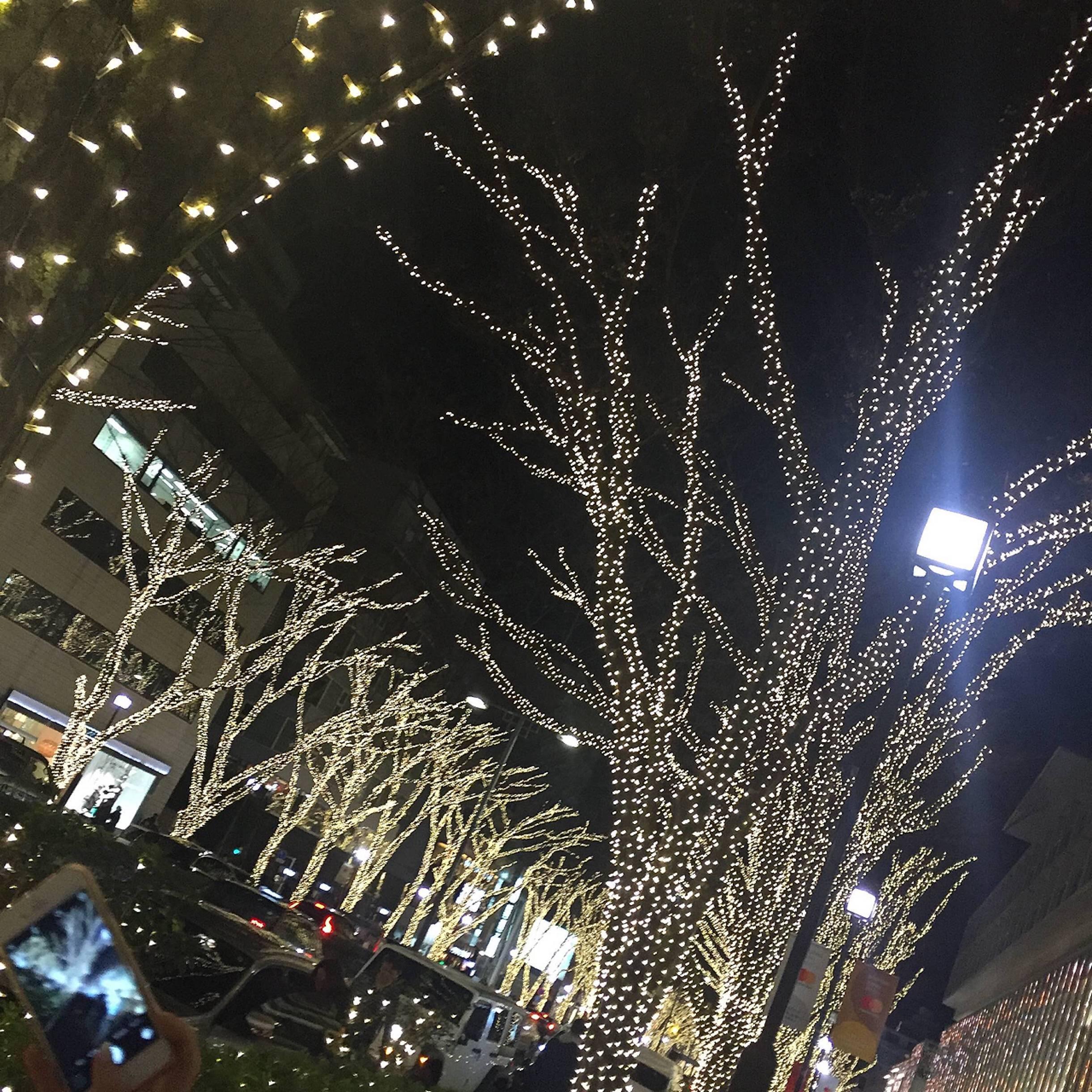 Vol.34♡ 表参道から渋谷へ!イルミネーションルートをご紹介❤︎_1_1