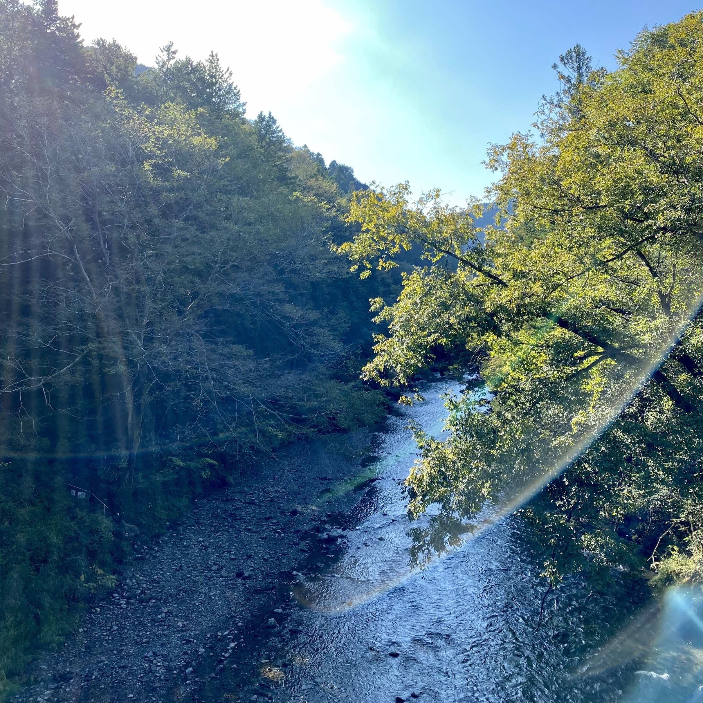 川がとても綺麗でした