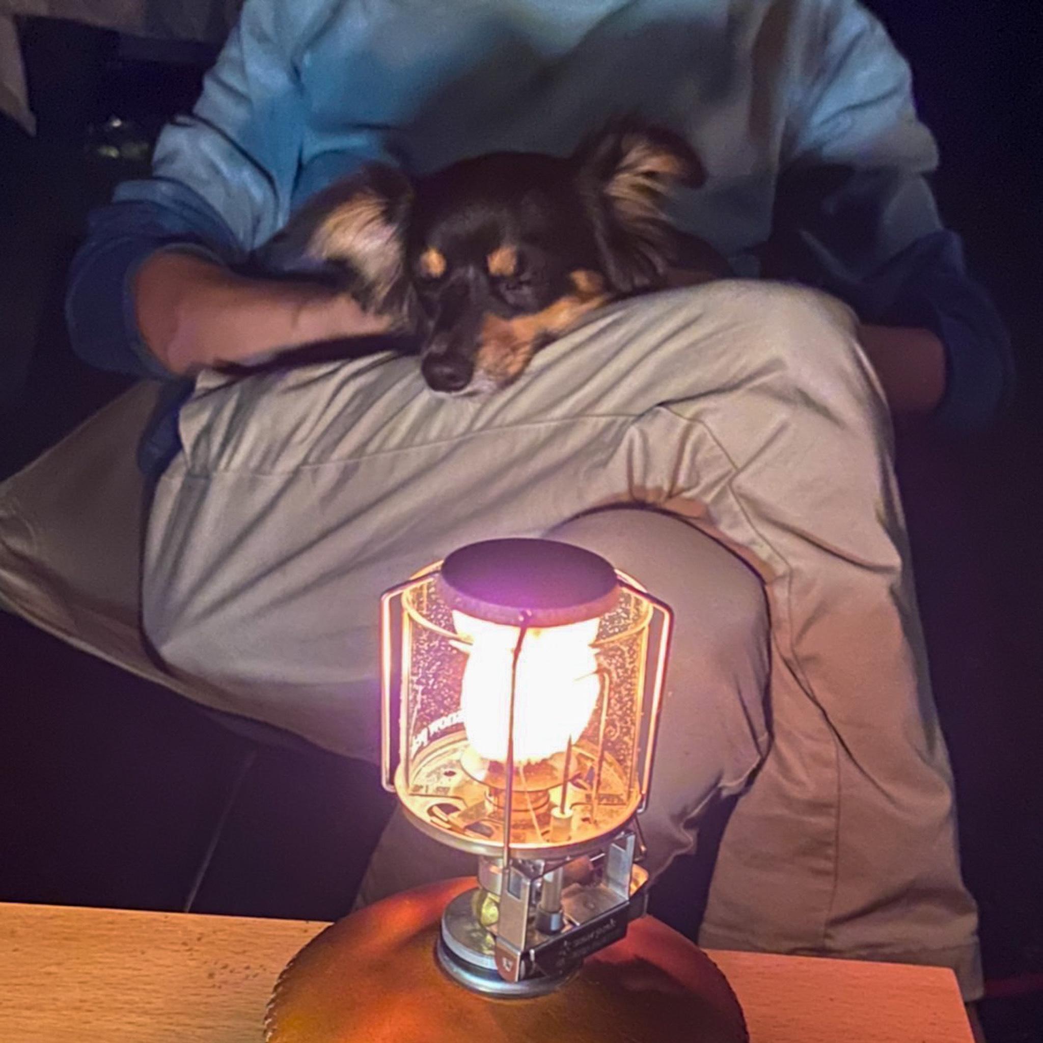 おすすめ!愛犬とのキャンプ♪_1_3