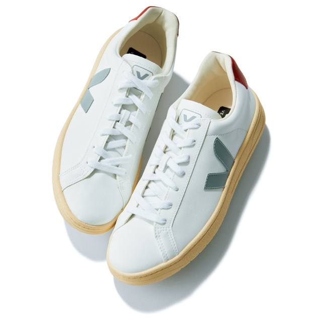 ヴェジャの靴