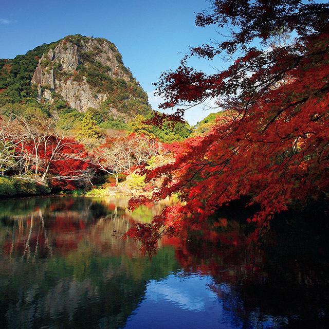 山向こうには樹齢3000年のご神木がそびえるパワースポット、武雄神社が